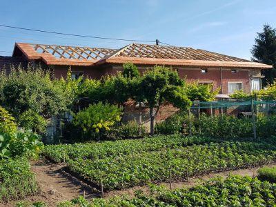 Изграждане на нова покривна конструкция - Изображение 1